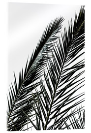 Metacrilato  Palm Leaves - Mareike Böhmer Photography