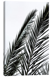 Lienzo  Palm Leaves - Mareike Böhmer Photography