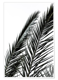 Póster  Palm Leaves - Mareike Böhmer Photography