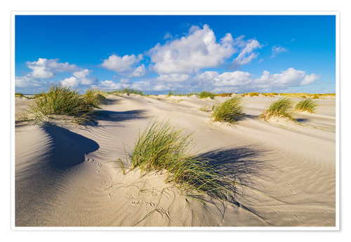 Póster Landscape with dunes on the island Amrum