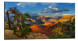Cuadro de aluminio  Grand Canyon Idyll - Michael Rucker