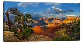 Lienzo  Grand Canyon Idyll - Michael Rucker
