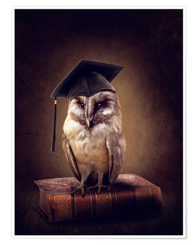 Póster wiseowl2017