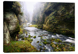 Lienzo  Kamnitz Gorge in the Saxon Switzerland - Reemt Peters-Hein
