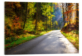 Cuadro de metacrilato  Road through autumn forest - Reemt Peters-Hein