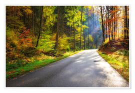 Póster Road through autumn forest