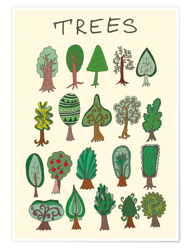 Póster Our tree species
