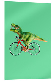 Metacrilato  BIKE T REX - Jonas Loose