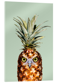 Metacrilato  PINEAPPLE OWL - Jonas Loose