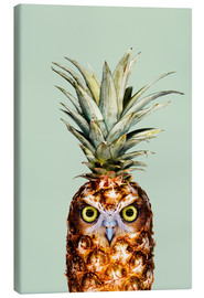 Lienzo  PINEAPPLE OWL - Jonas Loose