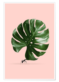 Póster  MONSTERA ANT - Jonas Loose
