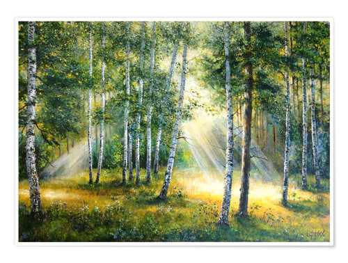 Póster Sunlight in the green forest