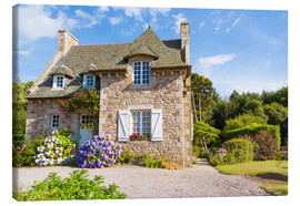 Lienzo  Country house in the summer