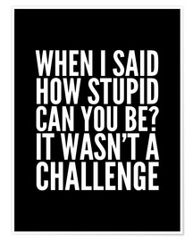 Póster When I Said How Stupid Can You Be It Wasn't a Challenge