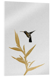 Metacrilato  Hummingbird & Flower II - Orara Studio
