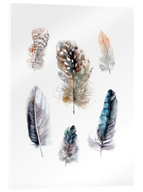 Metacrilato  Feathers collection - Verbrugge Watercolor