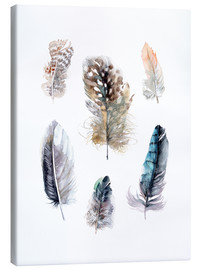Lienzo  Feathers collection - Verbrugge Watercolor