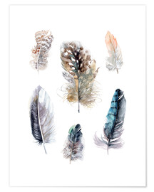 Póster Feathers collection