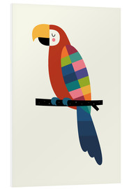 Forex  Rainbow Parrot - Andy Westface