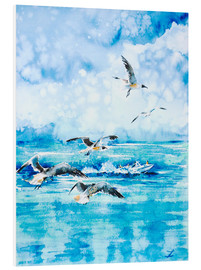 Cuadro de PVC  Black headed Seagulls At Seven Seas Beach - Zaira Dzhaubaeva
