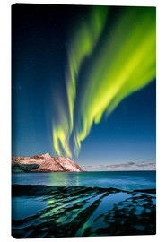Lienzo  Aurora Borealis in Northern Norway II - Sascha Kilmer
