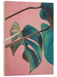 Madera  Sweet pink monstera leaves - Emanuela Carratoni