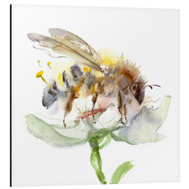 Cuadro de aluminio  Abeja - Verbrugge Watercolor