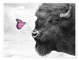 Póster Bison And Butterfly