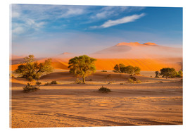 Cuadro de metacrilato  Morning mist over sand dunes and Acacia trees at Sossusvlei, Namibia - Fabio Lamanna