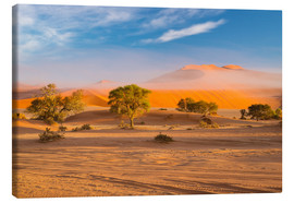Lienzo  Morning mist over sand dunes and Acacia trees at Sossusvlei, Namibia - Fabio Lamanna