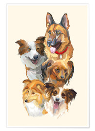 Póster Dog breeds portrait