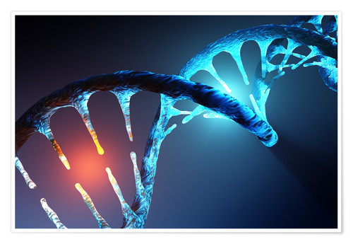 Póster DNA helix structure