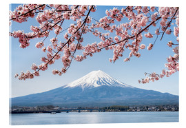 Cuadro de metacrilato  Mountain Fuji and cherry blossom at lake Kawaguchiko, Japan - Jan Christopher Becke