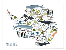 Póster Critters of the Antarctic
