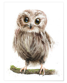 Póster baby owl