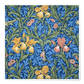 Póster  Iris - William Morris