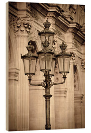 Cuadro de madera  Lamp posts and columns at the Louvre Palace, Louvre Museum, Paris, France. - age fotostock