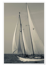 Póster  USA, Massachusetts, Cape Ann, Gloucester, America's Oldest Seaport, Annual Schooner Festival - Walter Bibikow
