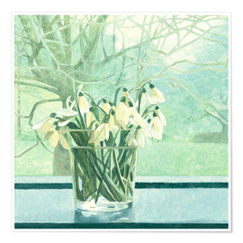 Póster Snowdrops