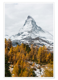 Póster Matterhorn mountain peak in autumn  View from Riffelalp, Gornergrat, Zermatt, Switzerland