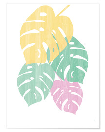 Póster  Monstera III Bright on White - Sarah Adams