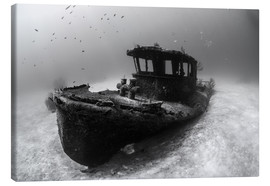 Lienzo  A tugboat wreck in the Bahamas. - Brook Peterson