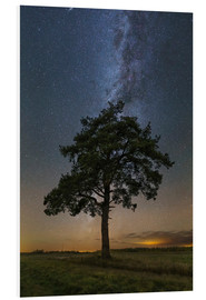 Cuadro de PVC  Lonely tree in a field at night under the Milky Way in Vyazma, Russia. - Yuri Zvezdny