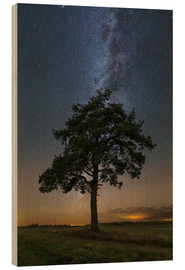 Cuadro de madera  Lonely tree in a field at night under the Milky Way in Vyazma, Russia. - Yuri Zvezdny