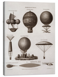 Lienzo  Illustration of early hot air balloon designs - John Parrot