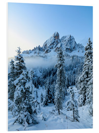 Cuadro de PVC  The high peak of Sass De Putia frames the snowy woods at dawn, Passo Delle Erbe, Funes Valley, South - Roberto Moiola