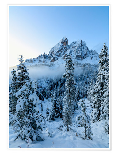 Póster The high peak of Sass De Putia frames the snowy woods at dawn, Passo Delle Erbe, Funes Valley, South
