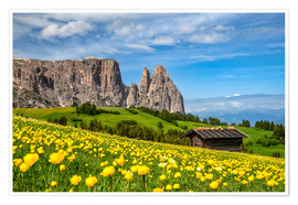 Póster  Spring on the Alpe di Siusi in South Tyrol - Achim Thomae