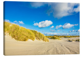 Lienzo  Landscape with dunes on the island Amrum, Germany - Rico Ködder