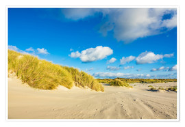 Póster Landscape with dunes on the island Amrum, Germany